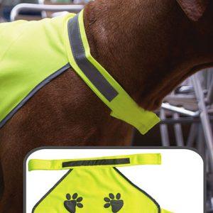 Bedruckte Sicherheitsweste für den Hund
